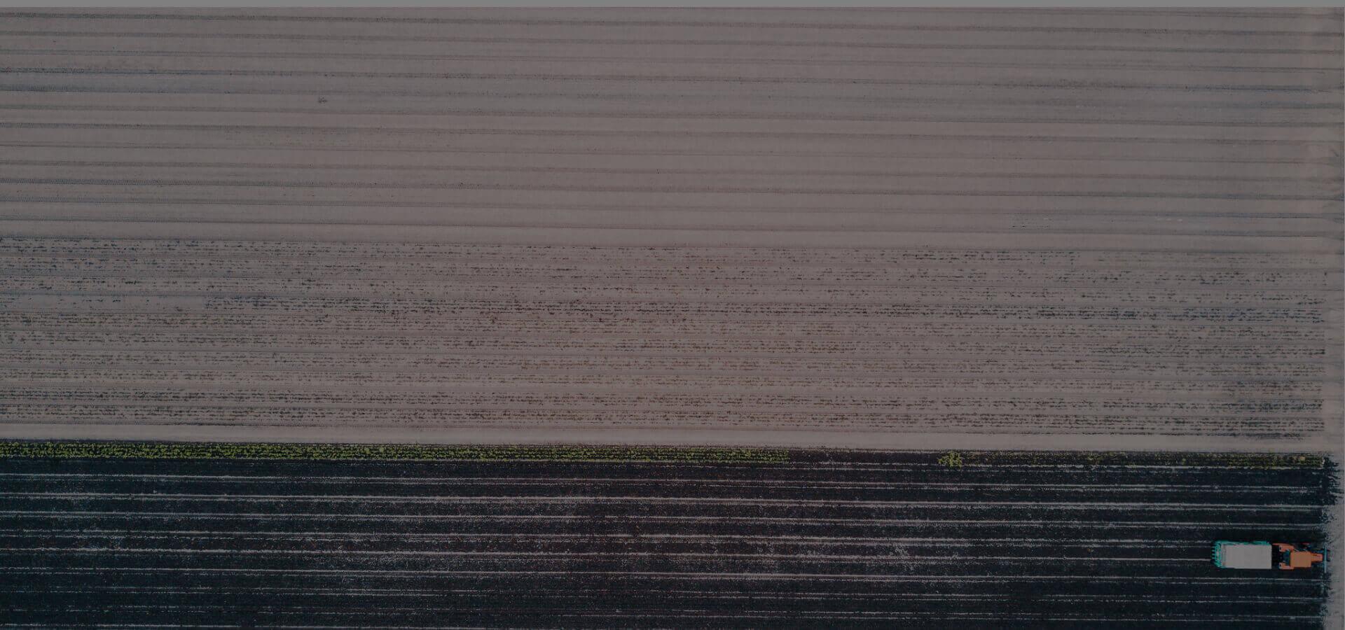 rolnictwo precyzyjne w Polsce zdjęcie dwóch pól z góry
