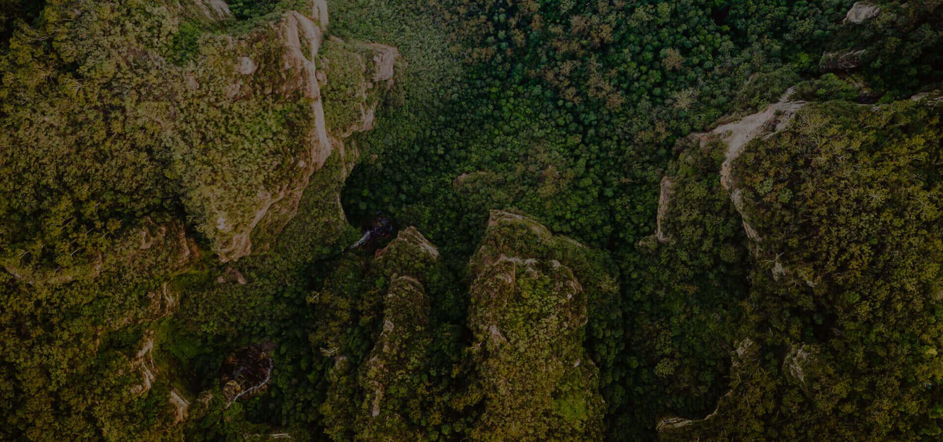 ortofotomapa z drona - zdjęcie doliny porośniętej lasem