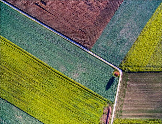 drony w rolnictwie - zdjęcie z lotu ptaka kolorowych pół