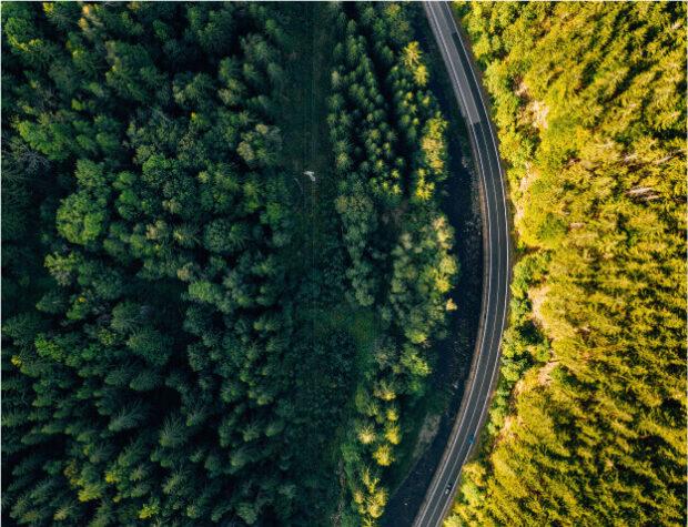 inspekcje dronem zdjęcie lasu rozdzielonego drogą