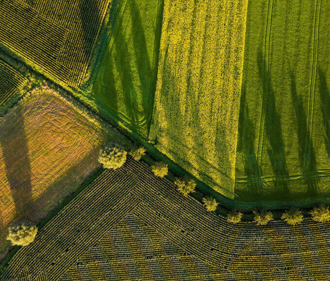 monitoring stanu upraw - zdjęcie pół przed zachodem słońca
