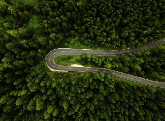 Leśnictwo dron